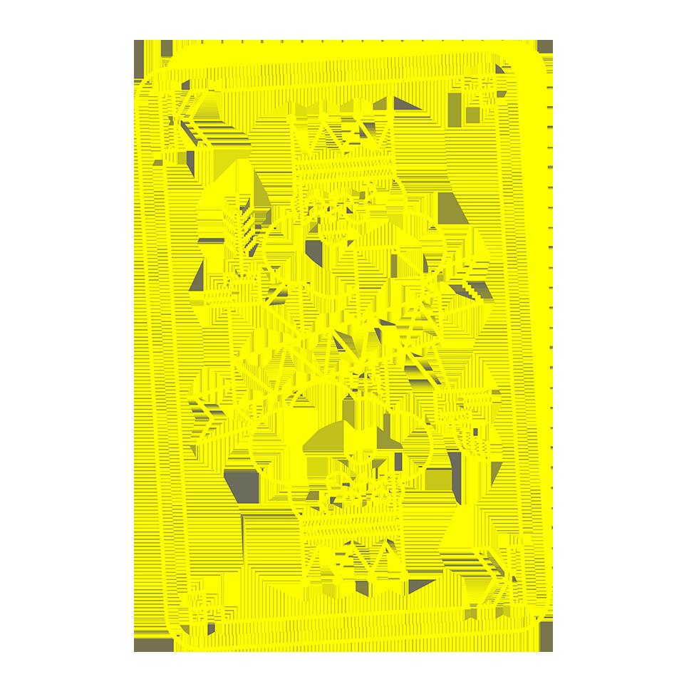 Les Habits neufs du Roi