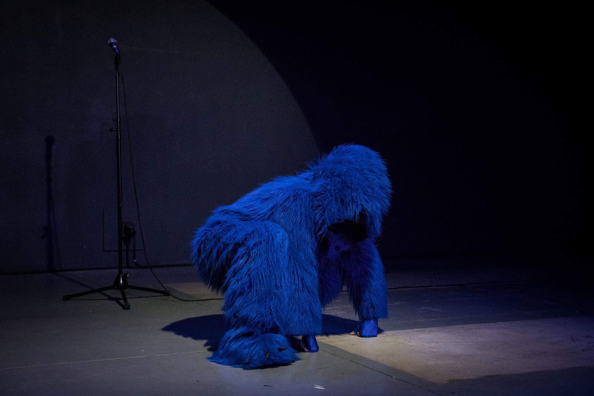 L'Orang-Outang bleue La Compagnie