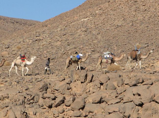 Le Sahara, désert habité et terre de passage